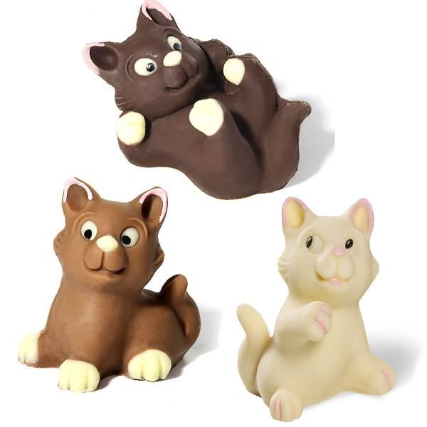 Gatti di cioccolato