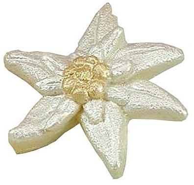 Stella alpina di cioccolato bianco