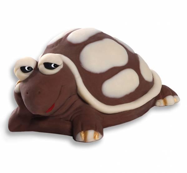 Tartaruga di cioccolato - Compleanno e Ricorrenze