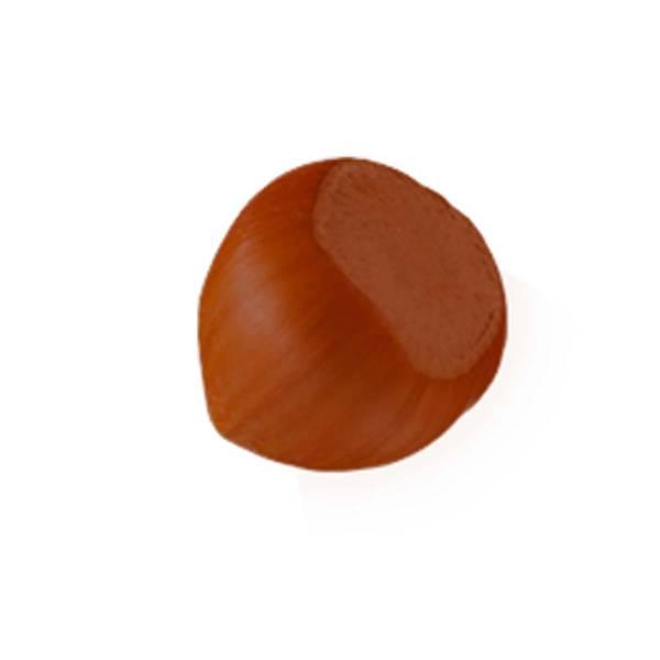 """""""Nocciola"""" di cioccolato al latte - Gastronomia di cioccolato"""